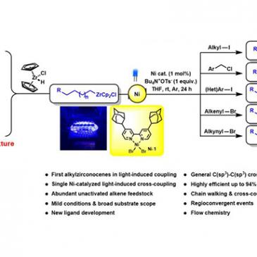 Visible-Light-Induced Nickel-Catalyzed Cross-Coupling with Alkylzirconocenes from Unactivated Alkenes